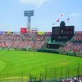 掲示板 栃木 県 高校 野球